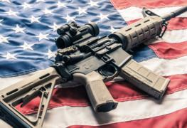 Deerfield, Illinois Citizens have 60 Days to Turn their Firearms In
