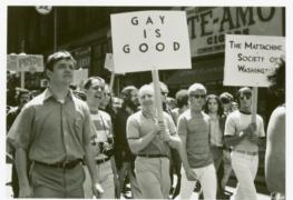 Gay rights, the counterculture, and the democratic process in the USA