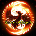 Recently Read Sunu Akkad Logo