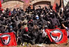 Recently Read antifa rioters 263x180