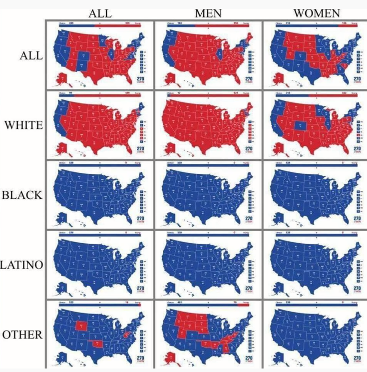 Recently Read Better Electoral Map