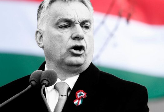 """Based"" Hungary & Their Vaccine Cards 1"