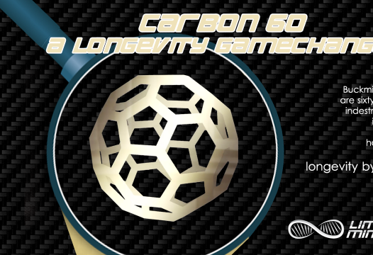 Carbon 60 is a Longevity Gamechanger [Infographic] 1