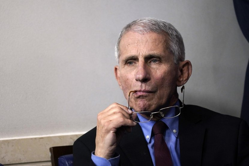 Why Does Everybody Hate Dr Fauci